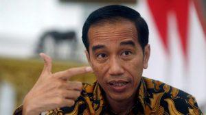 Menteri LHK Laporkan Kebakaran Hutan Mencapai 217 Titik Api ke Presiden Jokowi