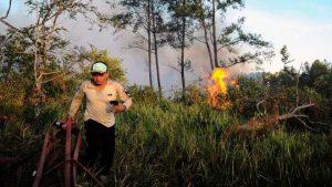 BMKG Pekanbaru Mendeteksi Keberadaan Tiga Titik Api di Riau