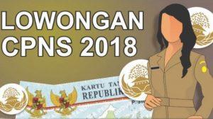 Dibuka Besok, 9 Syarat Pelamar Lowongan CPNS 2018
