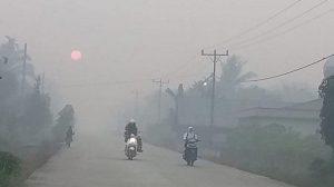 Kementerian LHK Sebut Kabut Asap Riau Masih Aman
