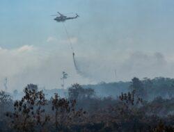 Polda Riau Tetapkan 8 Orang Petani Jadi Tersangka Karhutla