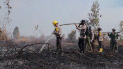 Polda Riau Tengah Menangani 17 Kasus Kebakaran Hutan