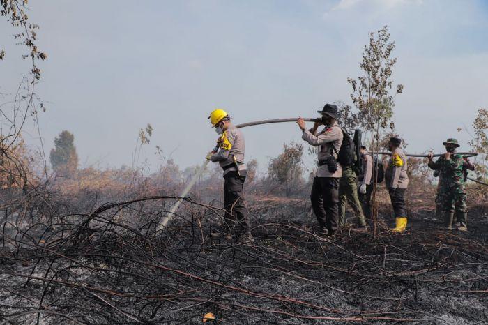 Polda Riau Amankan 9 Tersangka Kasus Karhutla