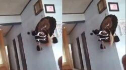 Video Viral Barongan Gerak Sendiri Tanpa Dipakai, Bikin Merinding